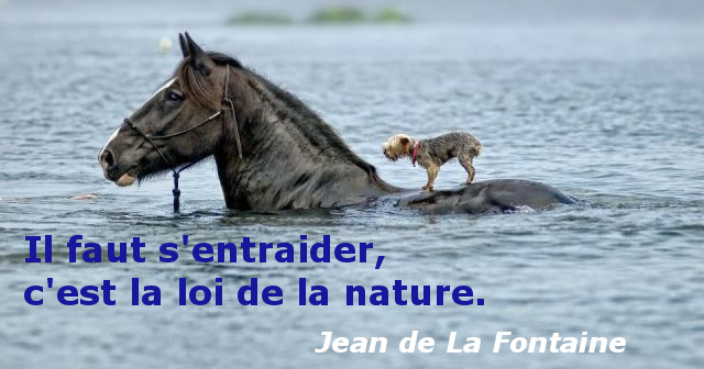citation nature - jean de la fontaine