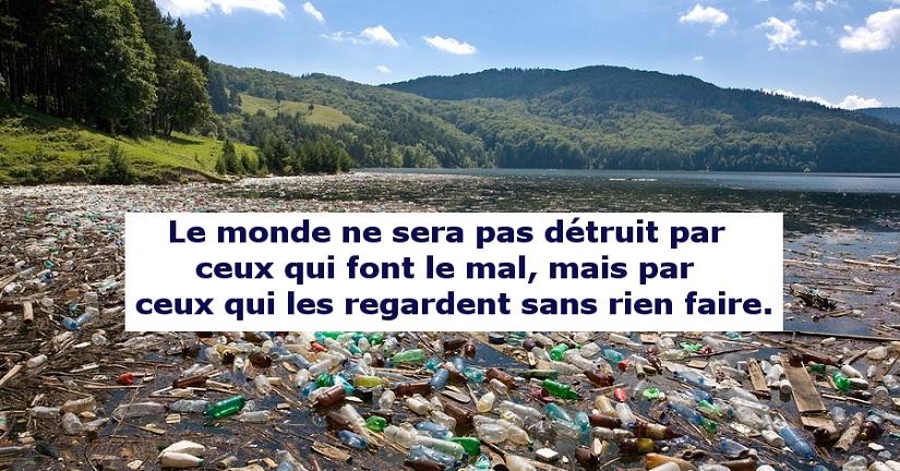 citation albert einstein - pollution