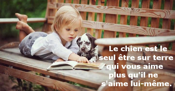 citation animaux - proverbe