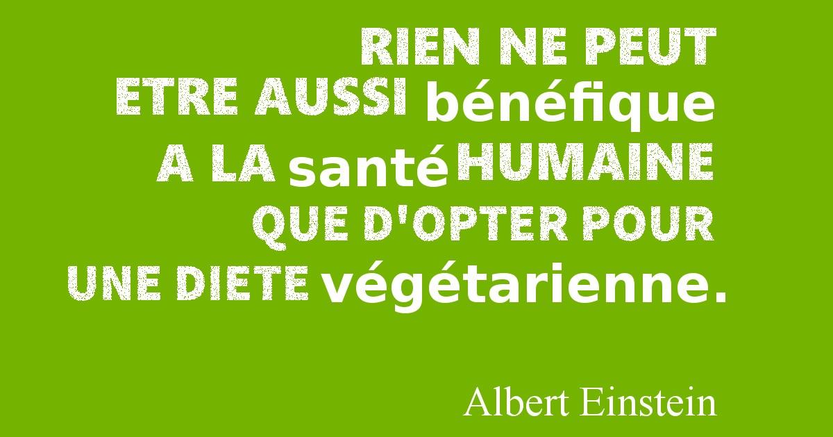 citation albert einstein - vegetarien