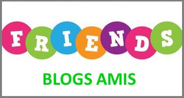 blog bio